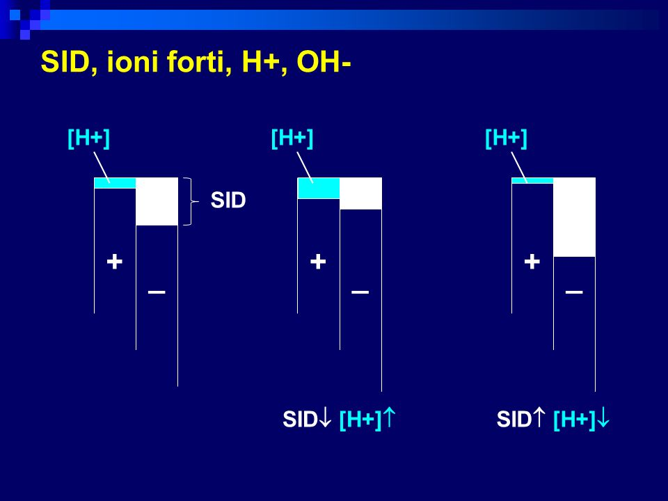 SID, ioni forti, H+, OH- + + + _ _ _ [H+] [H+] [H+] SID SID [H+]